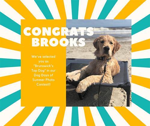Brunswicks Top Dog 2020 Brooks
